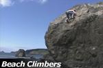 Beach Climbers