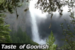 Taste of Goonish